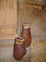 vintage Golden Gloves   EVERLAST  Boxing Gloves