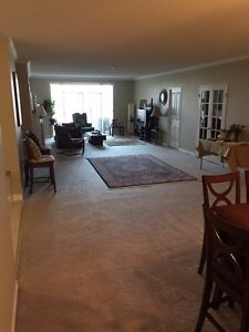 Spacious luxury 2+1 waterloo condo for rent - available Dec 28th Kitchener / Waterloo Kitchener Area image 4