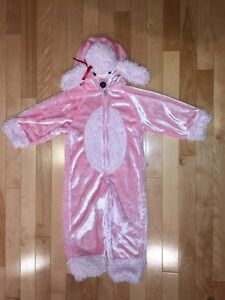 Excellent quality COSTUMES only $10 each! Strathcona County Edmonton Area image 5