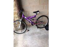 X2 Adult mountain bikes