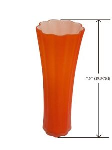 glass vase (Brand new)