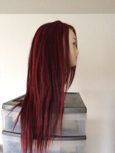 Brand New Lace Front Human Hair Wig $240.00 Strathcona County Edmonton Area image 4