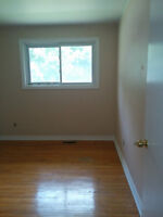 1 room left out of 3, brand new space, direct bus route to Brock