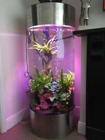 Stunning large fish tank 268L pick up only