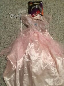 Princes Dress Halloween Costume