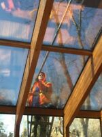 Spring promotion window and gutter cleaning