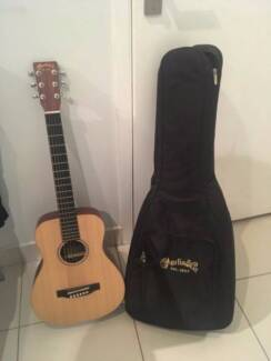 Martin & Co Acoustic Electric Guitar Small Sized Premium