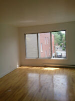 3 1/2 FULLY RENOVATED APARTMENT IN CDN - AVAILABLE RIGHT NOW