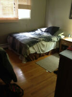 Furnished Rooms. All Incl. Close to MUN, Mall, HSC