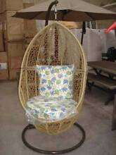 Tropical Paradise Egg Chair. Hanging Chair. Local Delivery. Maroochydore Maroochydore Area Preview