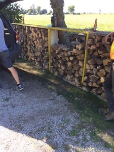 Firewood and Tree Removal Services London Ontario image 10