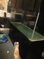 220 gallon aquarium with canopy and stand!