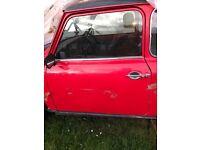 Classic mini doors