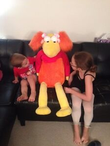 Red Fraggle is looking for a new home Kitchener / Waterloo Kitchener Area image 1