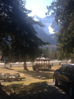 Housekeeper needed in Canmore, Accommidations may be available