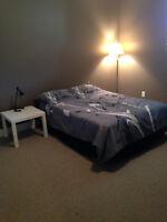 1 bedroom Student Suite
