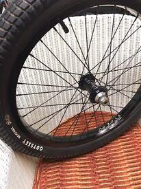 BMX Profile mini laced to proper magnalite rim - Odyssey Aitken tyre.