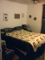 Need a roomate ASAP