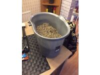 Bucket of fish tank gravel