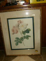 BEST OFFER BOMBAY COMPANY PRINT OF ROSA DAMASCENA