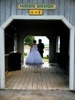 Gorgeous Morilee Plus Size Wedding Dress