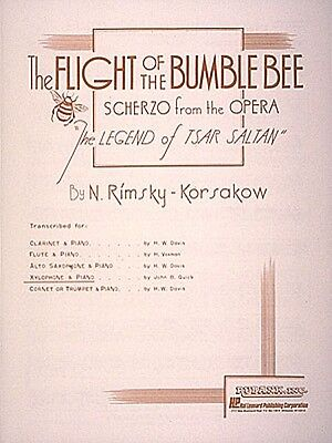 Percussion - Xylophone Marimba