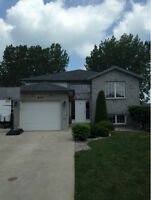 Just listed in the heart of Belle River 4 Bedrooms $197,900