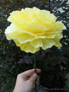 Custom Dyed Coffee Filter Peony Flower/ Wedding Decor Belleville Belleville Area image 1
