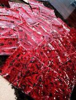 Rose Pashmina Shawl scarf Hijab $10 - Burlington