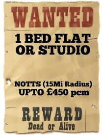 1 BED FLAT/STUDIO WANTED - TO £450 PCM