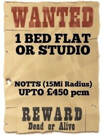 Wanted - One Bed Flat or a Large Studio (Notts, Upto £450pcm)