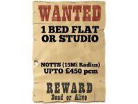 Wanted: Studio or 1B Flat (Notts, Upto £450 pcm)
