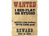 1B Flat or Studio Wanted - To £450pm