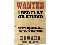 1 BED FLAT OR LGE STUDIO WANTED - NOTTS