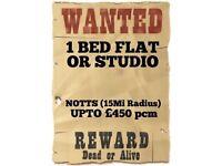 1 Bed Flat/Large Studio Wanted - Notts