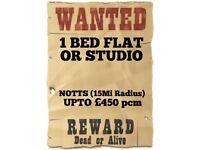1 Bed Flat/Studio Wanted - Upto £450 pcm (Notts Area)