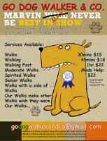 Dog Walking Day Care Vacation Services