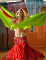 Hire A Professional Bellydancer for Your Event!