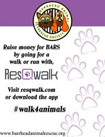 HELP AN ANIMAL RESCUE GROUP BY WALKING YOUR DOG!!!
