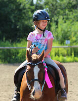 Summer Horse Camp in Olds, AB