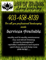 Ace of Spades Landscaping