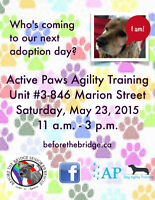 **ADOPTION EVENT - Sat. May 23 - 11:00am - 3:00pm****