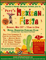 Sheba's Haven Rescue Mexican Fiesta