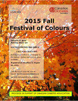 Call for Crafters - 2015 Fall Festival of Colours Craft Fair