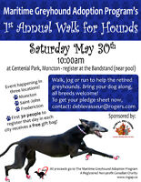 WALK FOR HOUNDS - JOIN US!! FUN!