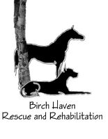 Seeking Metal Crates for Birch Haven Rescue - Giant Breed Dogs
