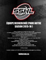 ÉQUIPE DE HOCKEY RECHERCHÉE POUR NOTRE SAISON 2015-16 !