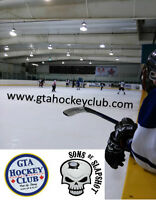ADULT SHINNY PICK UP HOCKEY FRI APR 3rd 9:30 pm Canlan York