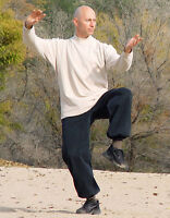 Tai Chi and Chinese Internal Martial Arts
