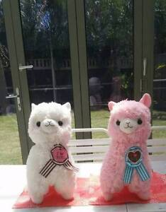 I Love You Alpacas $50each or $100 for both Craigieburn Hume Area Preview